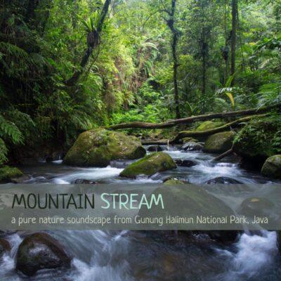 Nature Sounds Album cover - 'Mountain Stream'