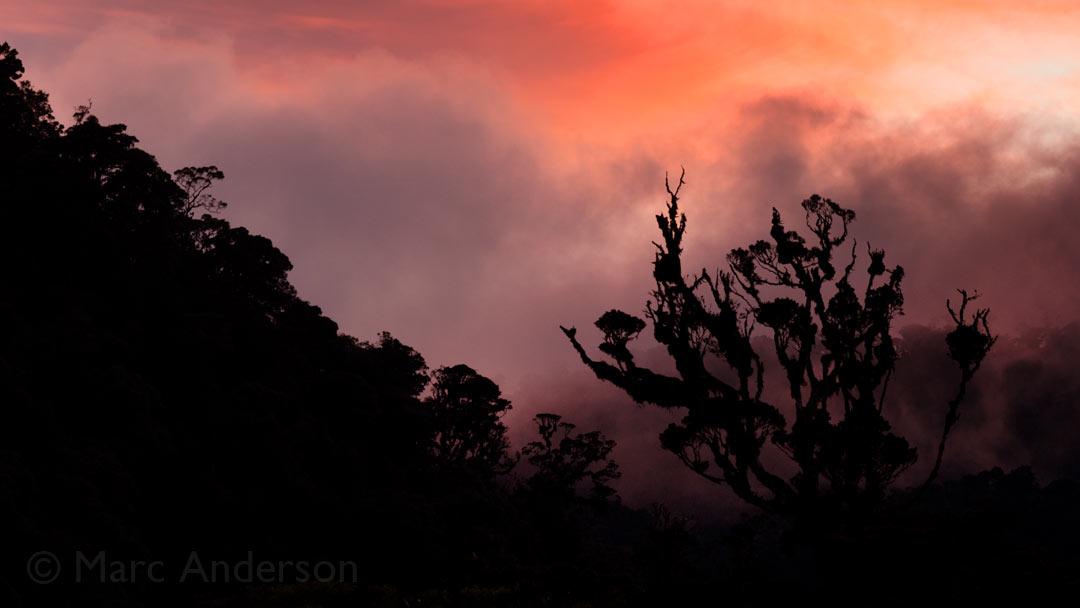 Dawn in the Papua New Guinea Highlands