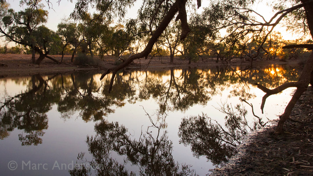 Sunrise by a Billabong – Outback Queensland, Australia