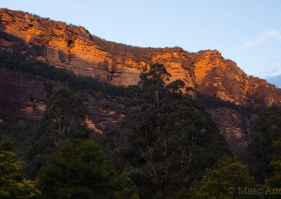 Sandstone cliffs in Wollemi