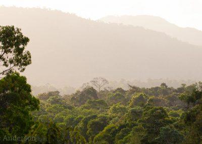 View of Kutini-Payamu