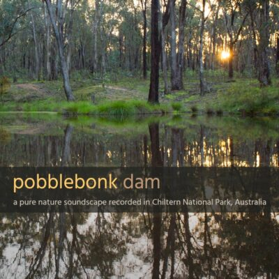 Pobblebonk Dam - Album Cover