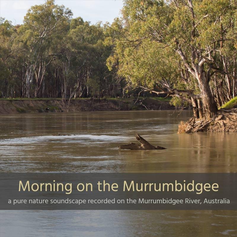Morning on the Murrumbidgee - Album Cover