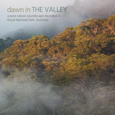Dawn in the Valley - Album Cover