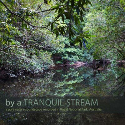 By a Tranquil Stream - Album Cover