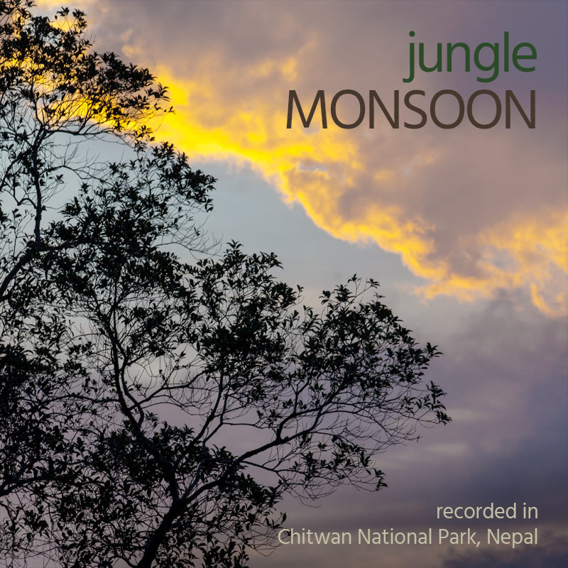 Jungle Monsoon - Album Cover