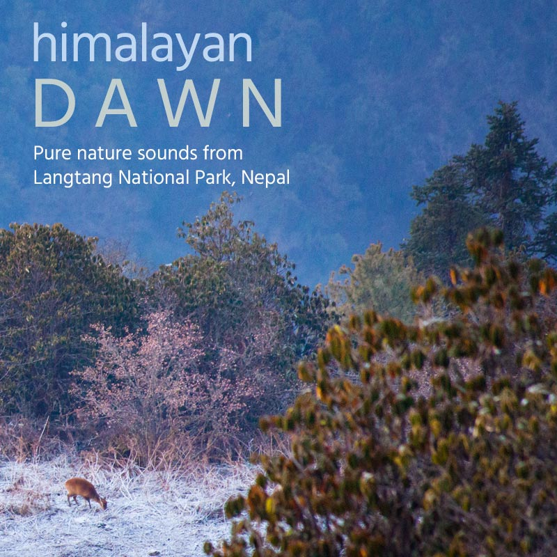 Himalayan Dawn - Album Cover