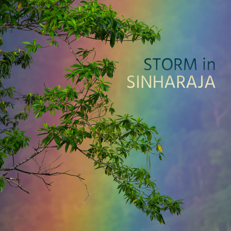 Storm in Sinharaja - Album Cover