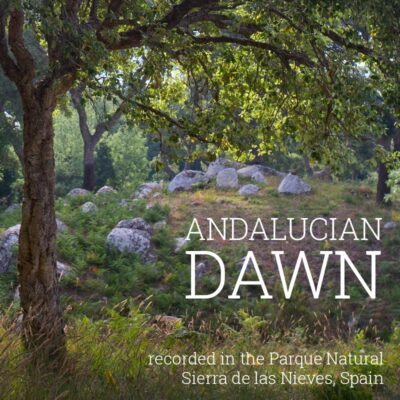 Andalucian Dawn - Album Cover