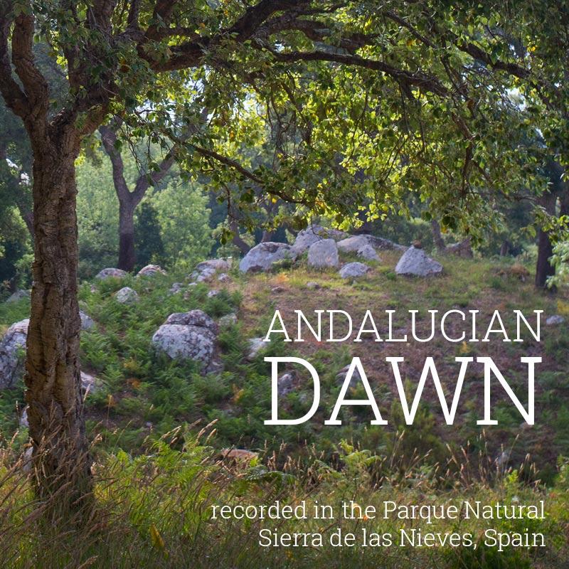 Andalucian Dawn - Album Cover