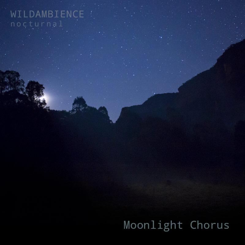 Moonlight Chorus - Album Cover